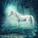 Seeking Unicorns | Weekly Wrap-Up